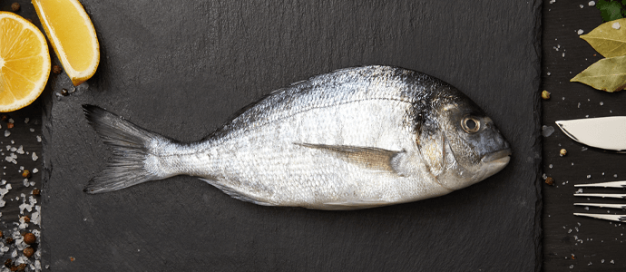 Jūrinis koalgenas iš žuvų
